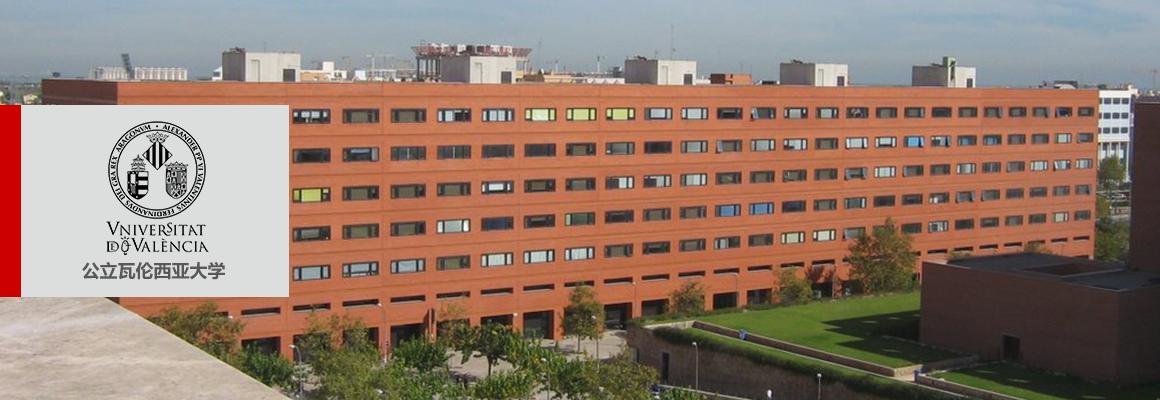 公立瓦伦西亚大学